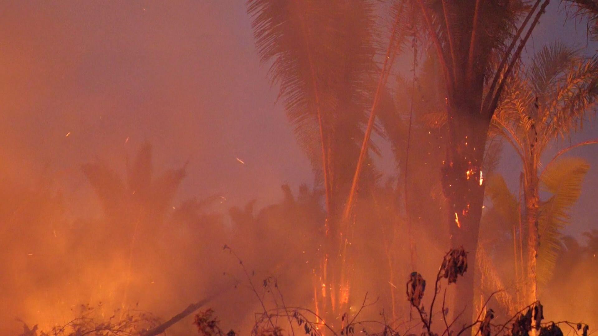 Brand im Amazonasgebiet