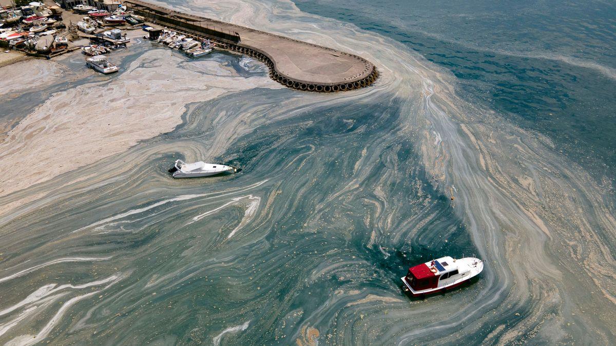 Schleim bedroht das türkische Marmarameer
