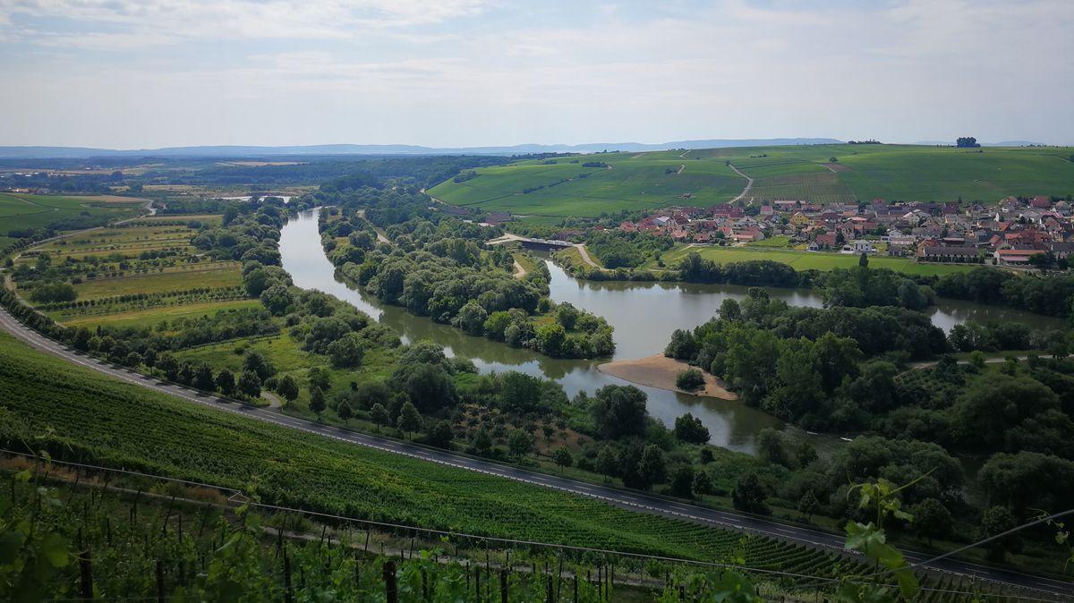 Blick auf Weininsel mit Nordheim