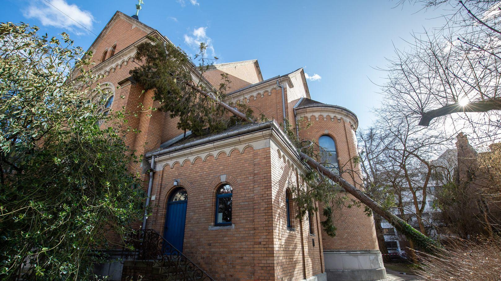 Ein Baum wurde vom Wind auf das Dach der Christuskirche Landshut geworfen.
