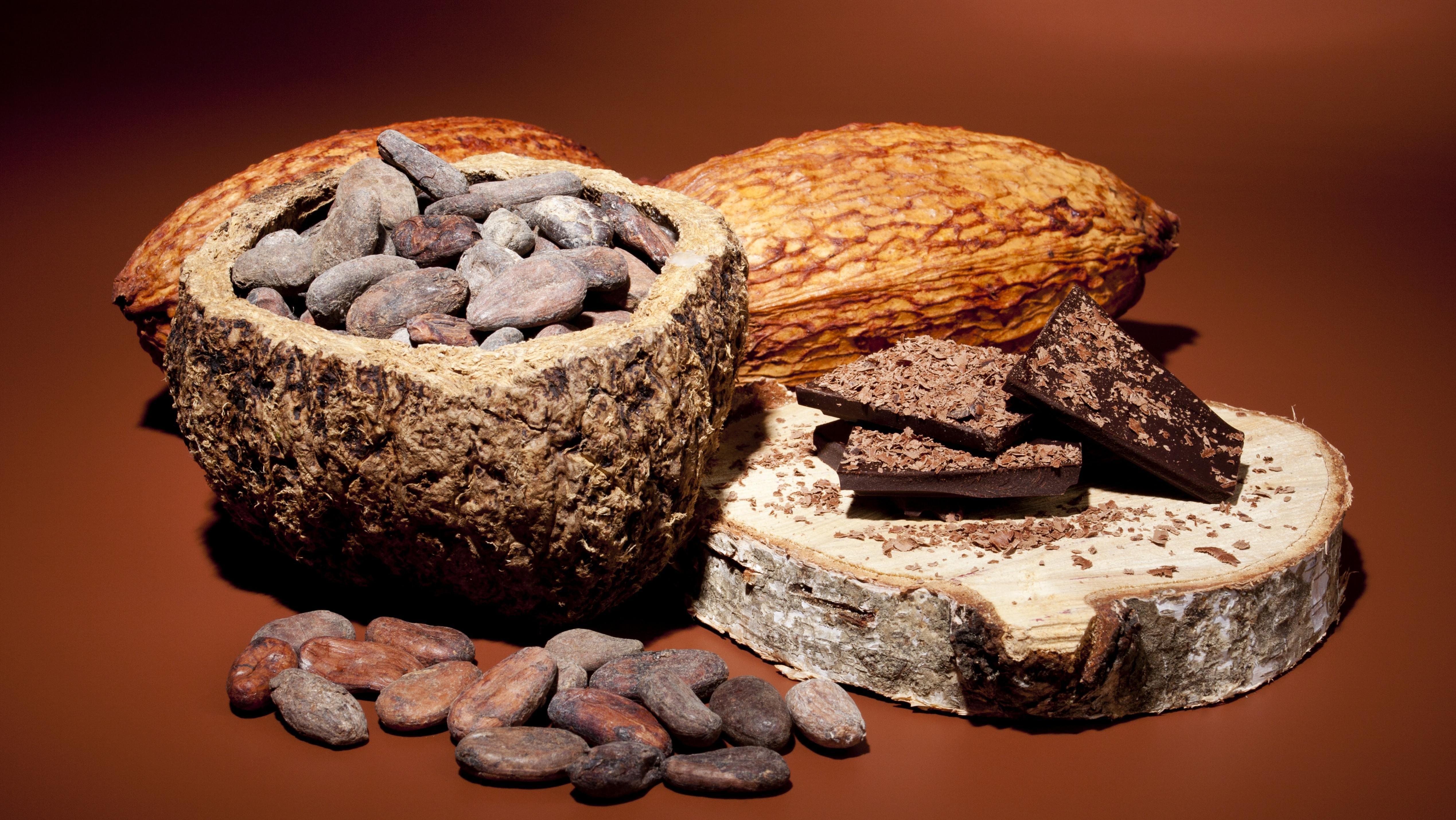 Kakaobohnen, Kakaofrucht und dunkle Schokolade - eine perfekte Mischung.