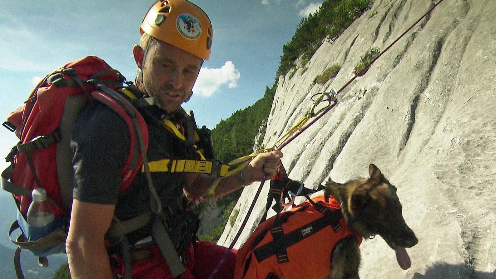 Berg-Rettung mit Suchhund