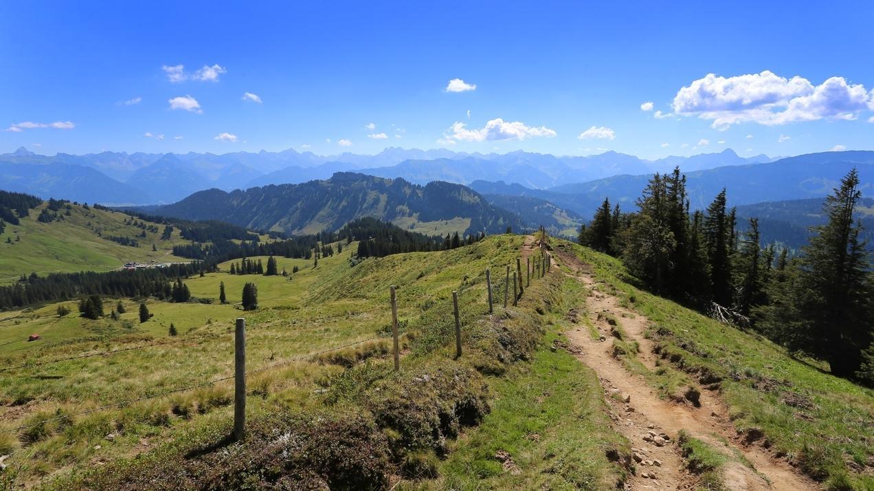 Wanderweg am Riedberger Horn
