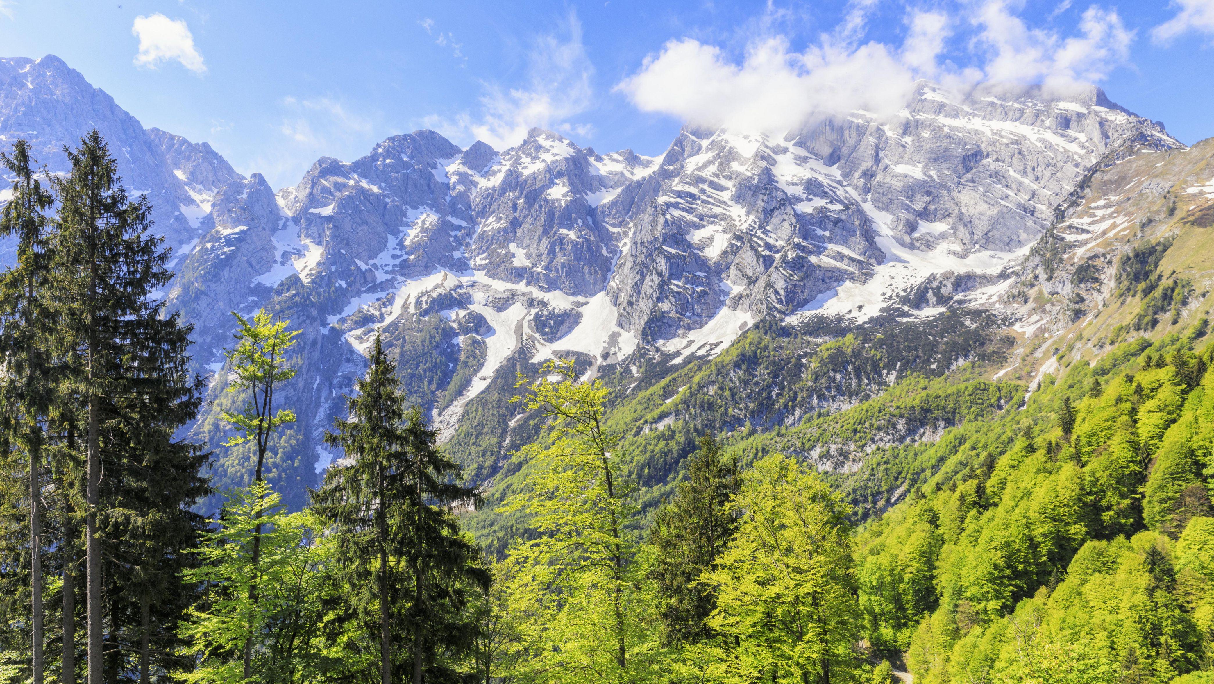 Blick vom Bergwald oberhalb von Gasteig, Ortsteil von Kuchl bei Salzburg, einem Hochtal über dem Salzachtal hinauf zur massiven Ostwand des Hohen Göll, Berchtesgadener Alpen.