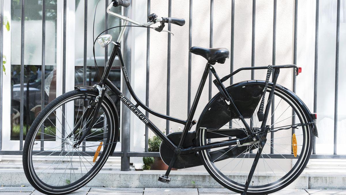Holland-Rad