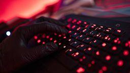 Ein Mann trägt Handschuhe und tippt auf einer Tastatur. | Bild:dpa-Bildfunk/Nicolas Armer
