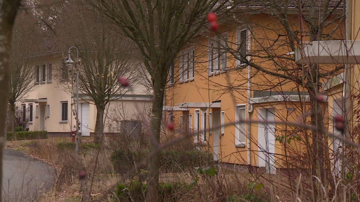 Bäume stehen vor zwei Gebäuden, das Gelände davor ist verwildert.