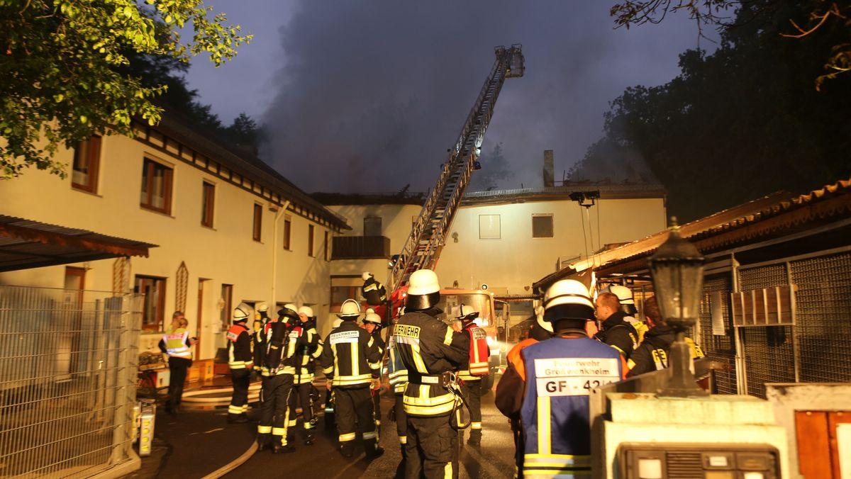 In einem Tierheim in Unterfranken sind bei einem Brand mehr als 60 Tiere ums Leben gekommen.