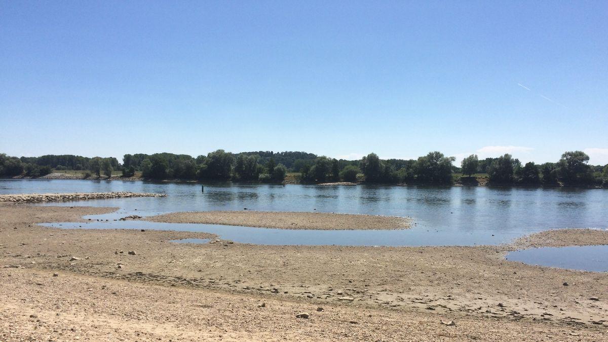 Ausgetrocknetes Ufer der Donau bei Metten im Sommer 2015.
