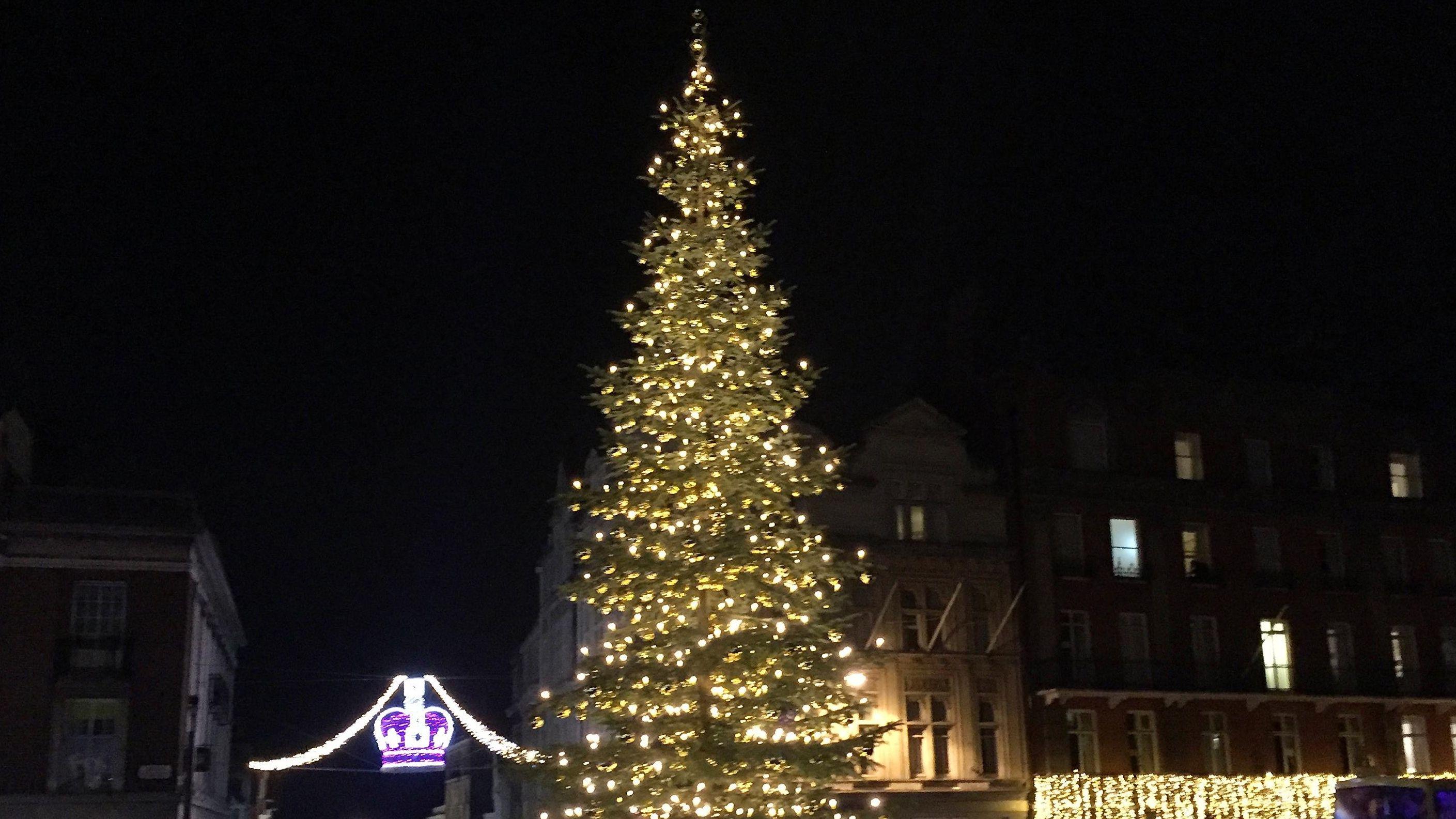 Der Weihnachtsbaum vor Schloss Windsor 2017
