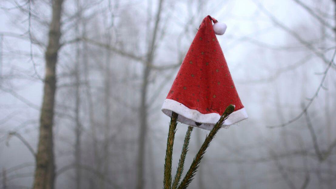 Eine Nikolausmütze hängt in einem nebligen Wald
