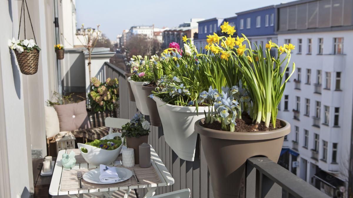 Blumenkästen sehen Eigentümer als Anbauten. Die sind nur innerhalb des Balkons erlaubt.