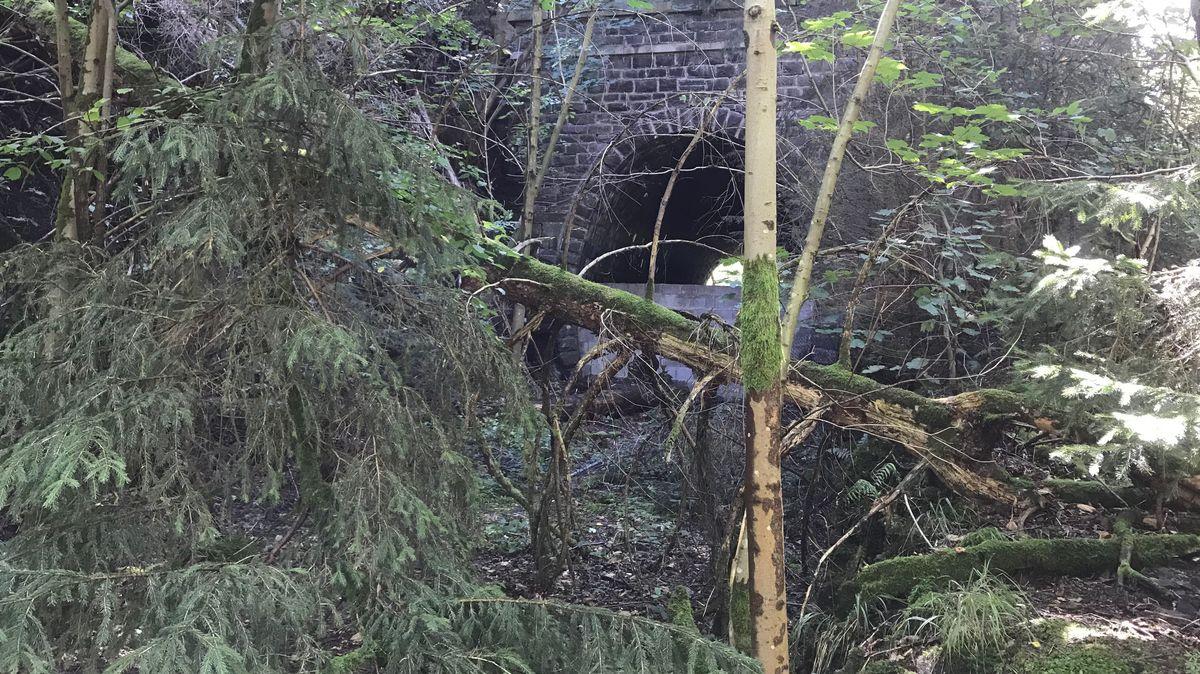 Ein zugemauerter und zugewachsener Tunnel der einstigen Höllentalbahn.