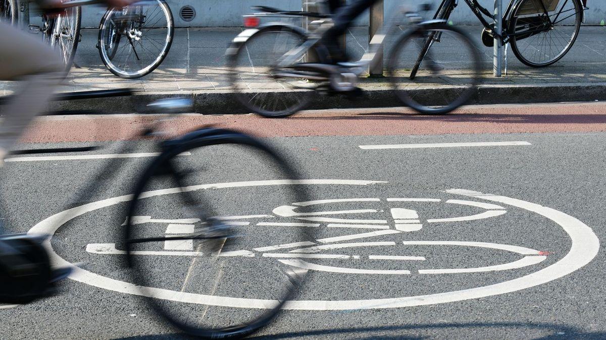 Fahrräder fahren auf einem Radweg.