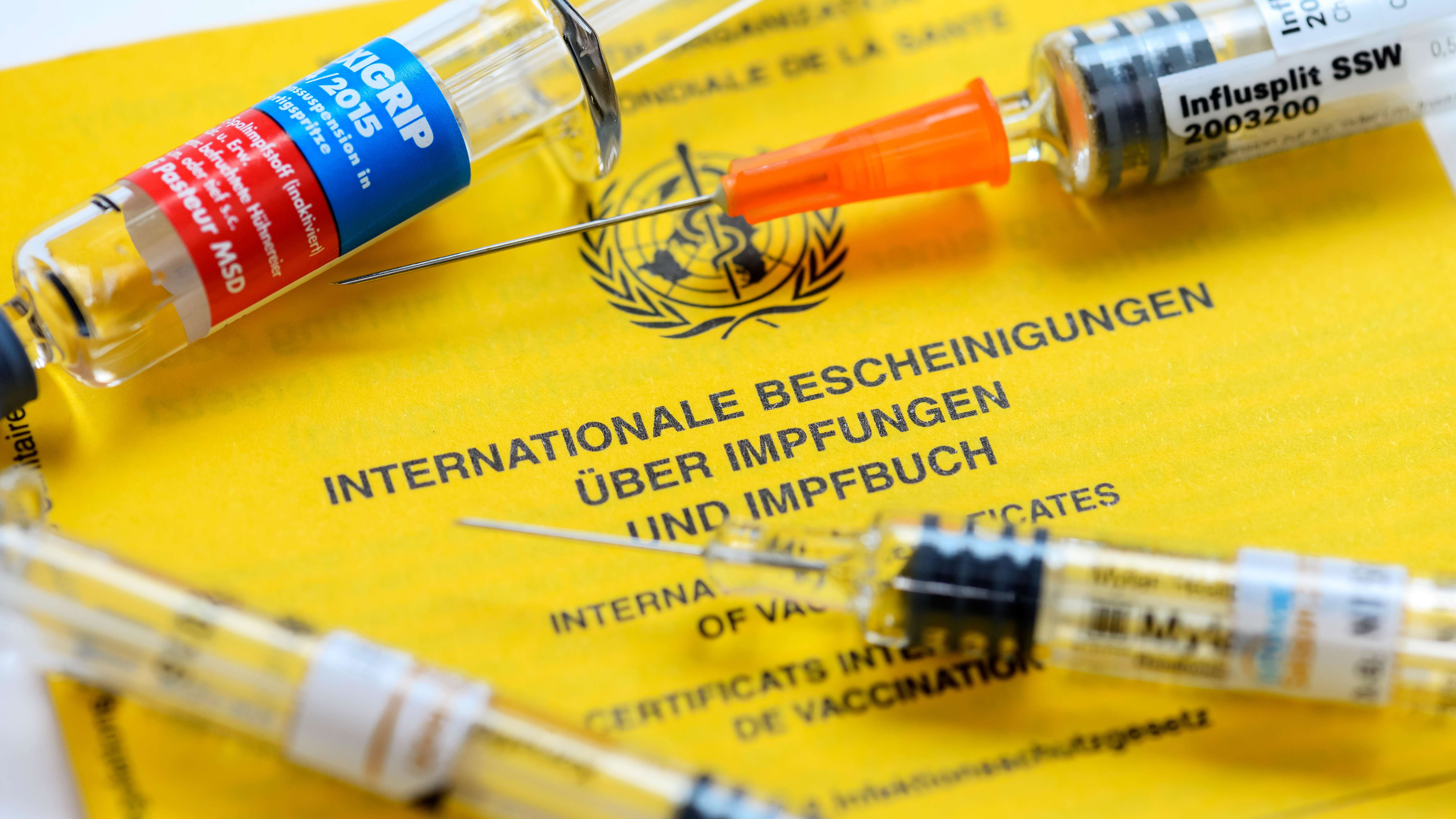 Impfausweis und Impfspritzen