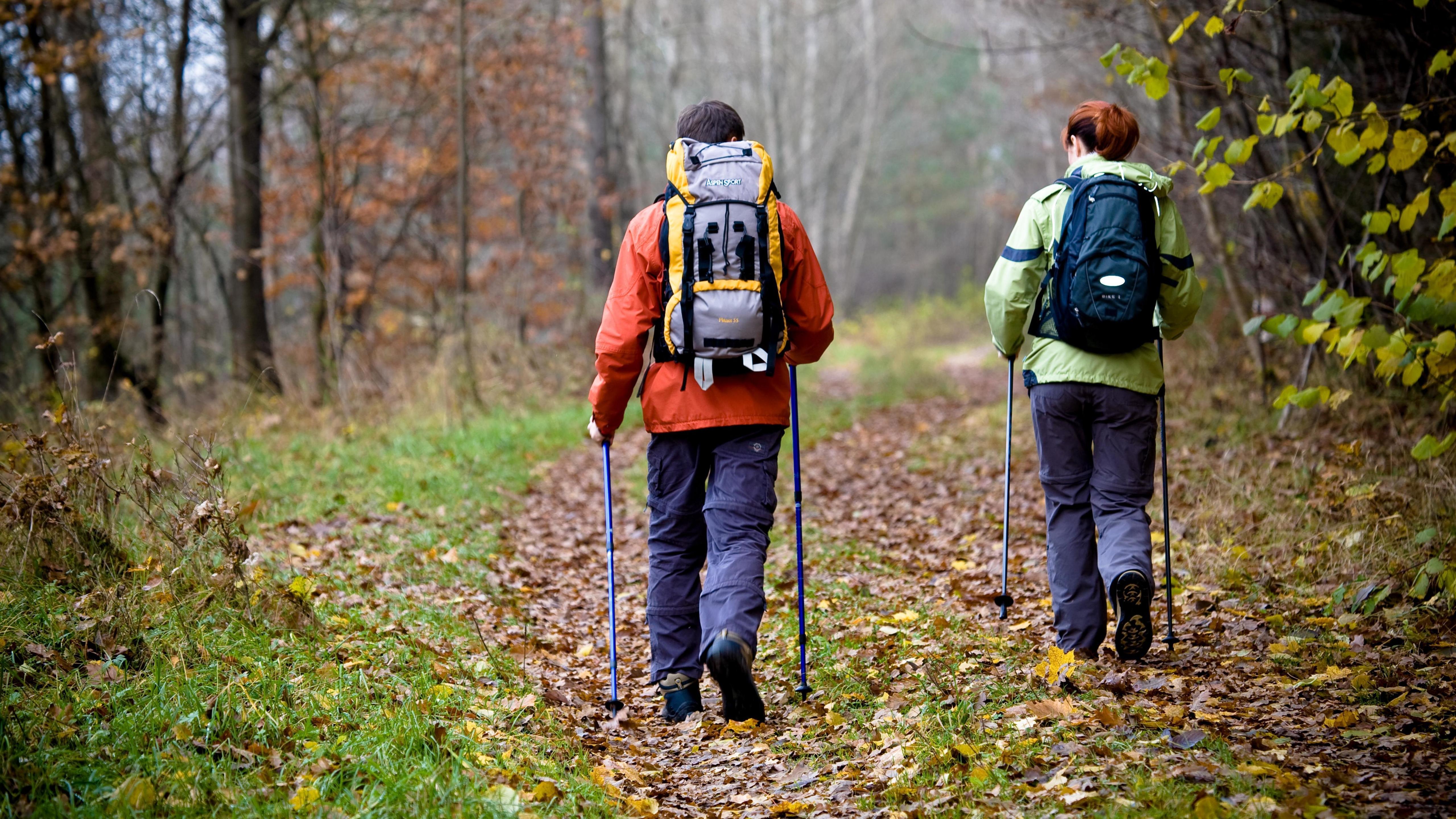 Wanderer in einem herbstlichen Wald