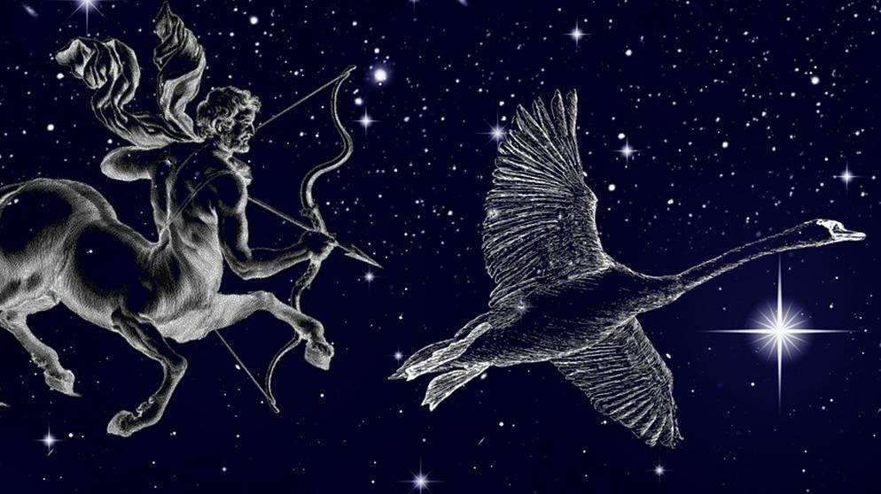 Symbole der Sternbilder Schütze und Schwan