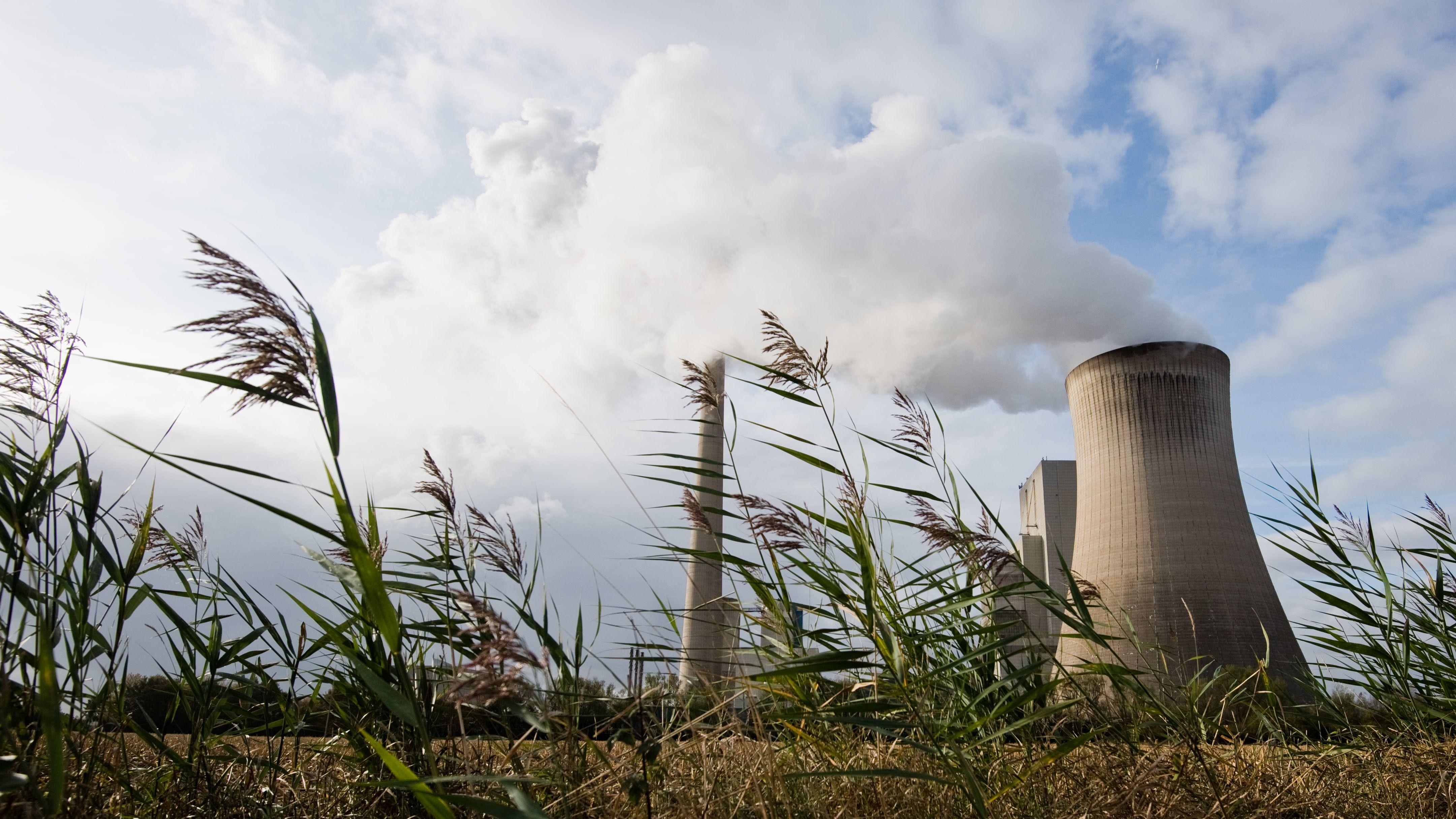 Niedersachsen, Hohenhameln: Dampf steigt vom Kohlekraftwerk Mehrum auf.