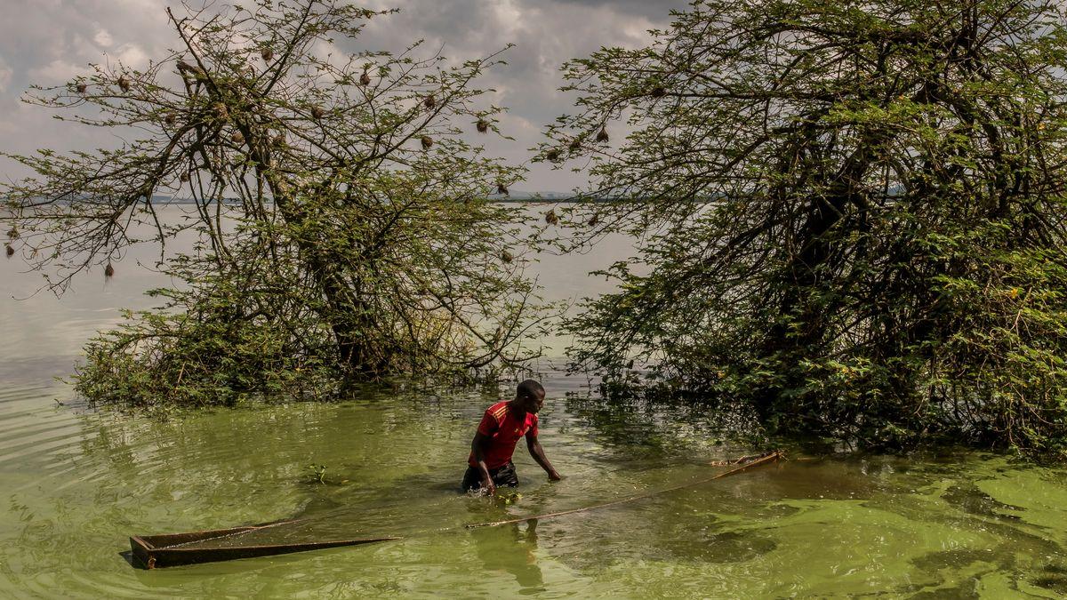 Ein afrikanischer Fischer holt sein im Schlick verstecktes Boot am Ufer des Viktoriasees hervor.