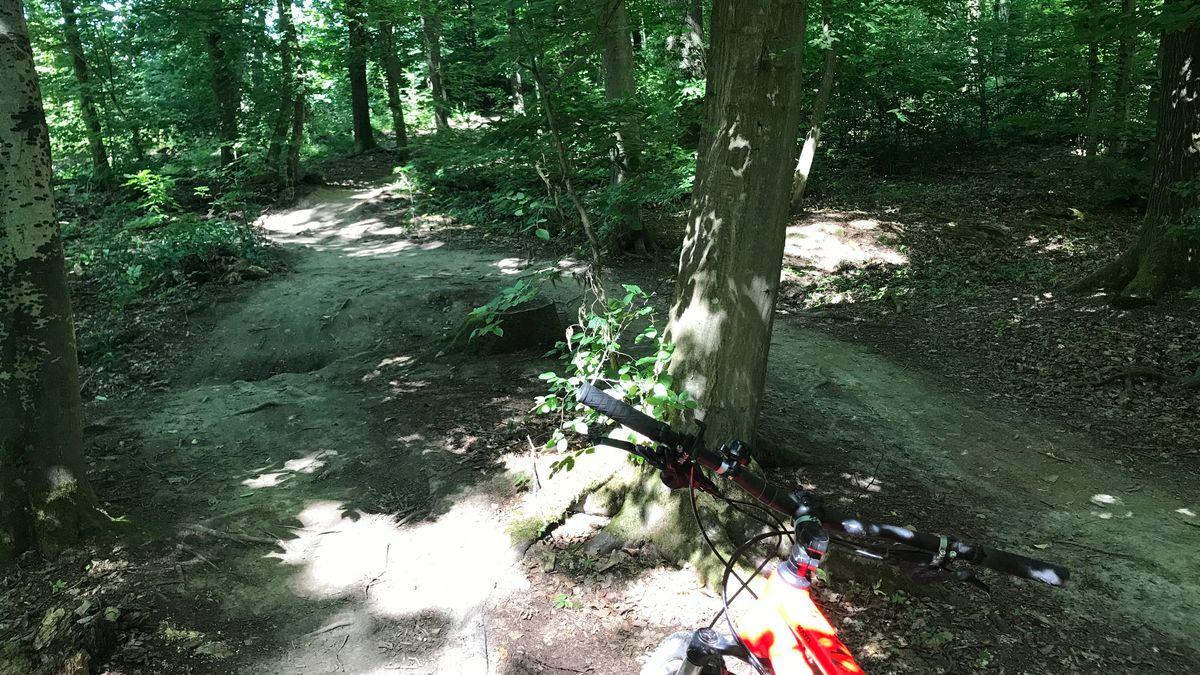 Schmale Wege im Wald bei Kist werden gerne von Mountainbikern gefahren.