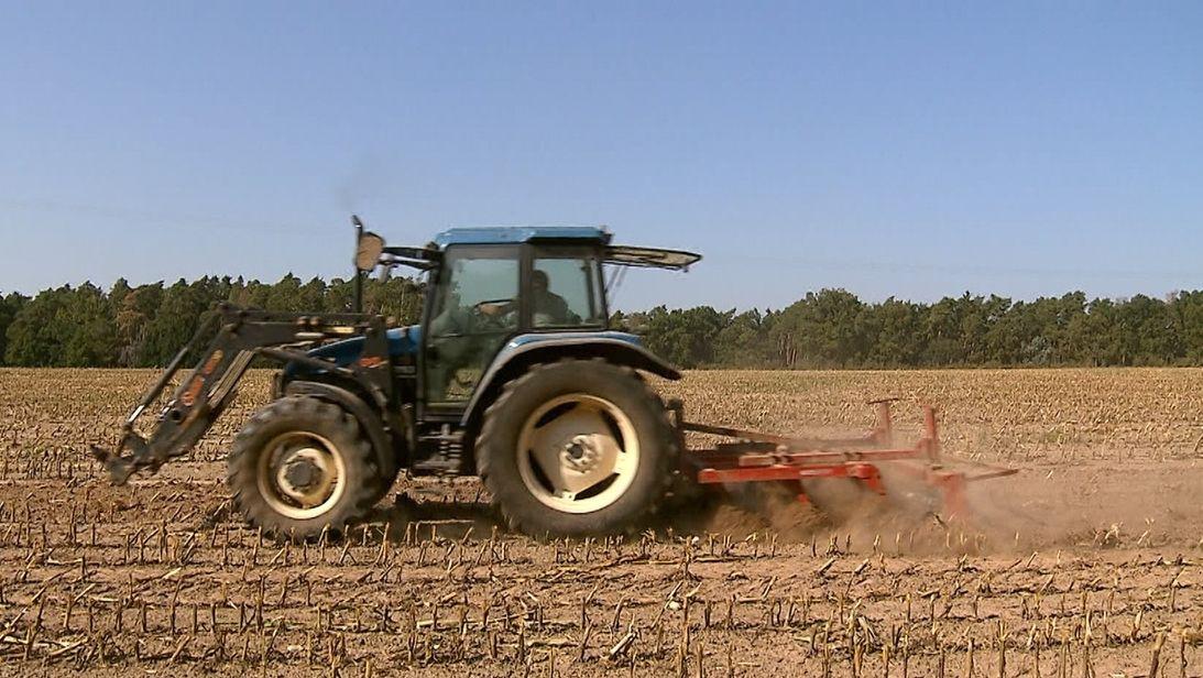 Ein Traktor pflügt ein knochentrockenes Feld um. Die Erde staubt.