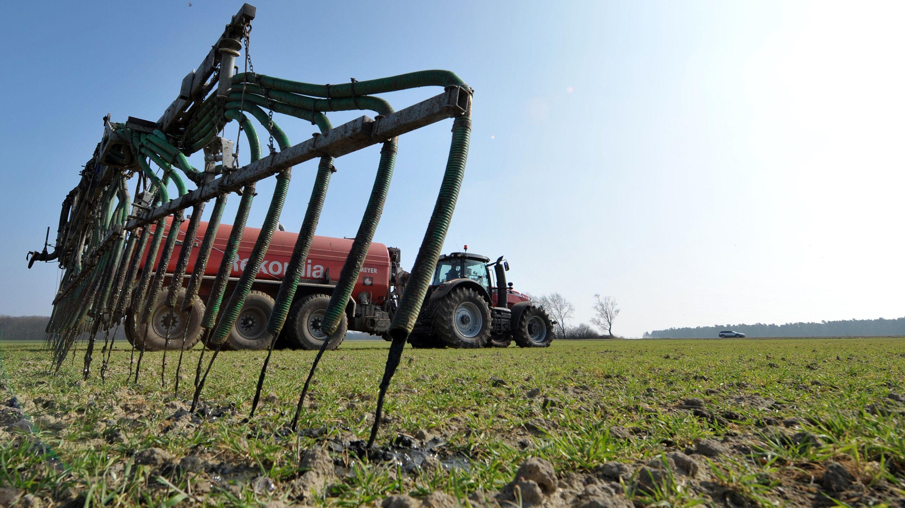 Ein Landwirt verteilt Gülle auf einem Feld.