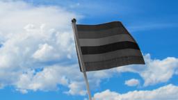 Mitglieder der LGBTQ-Community auf TikTok sind oft vorsichtig bei der Benennung konkreter Begriffe   Bild:Brielle French / Bayerischer Rundfunk
