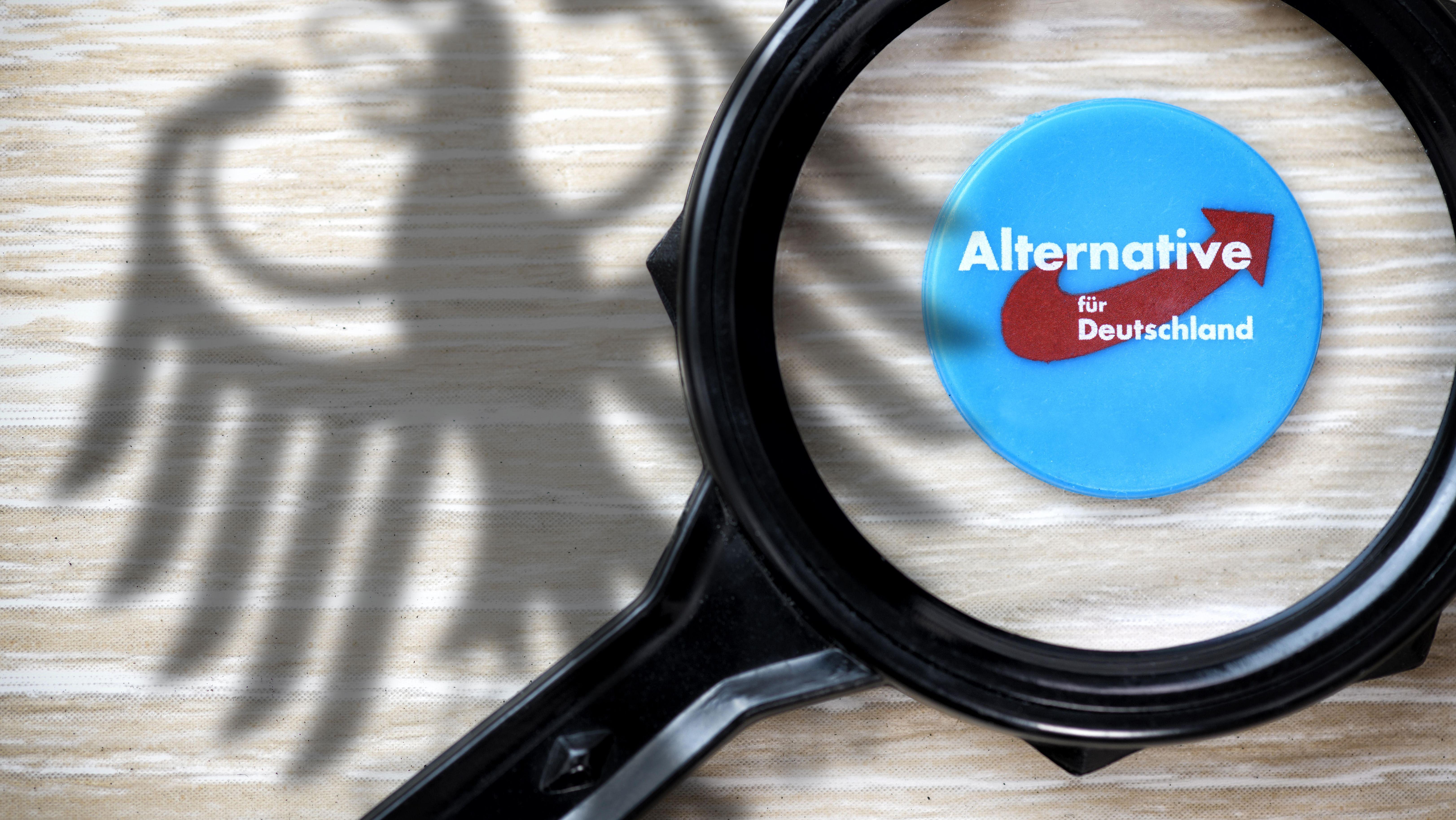 Das Logo der AfD unter einer Lupe - im Hintergrund der Bundesadler