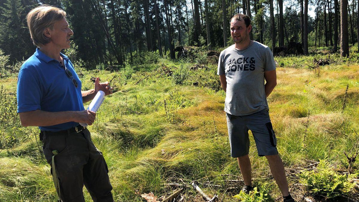 Durch die Beratung des Försters hat Waldeigentümer Thomas Forsthuber (rechts) von staatlichen Zuschüssen für den Waldumbau erfahren.