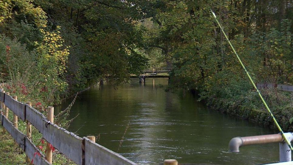 Angel an der Alz. Blick auf den Fluss