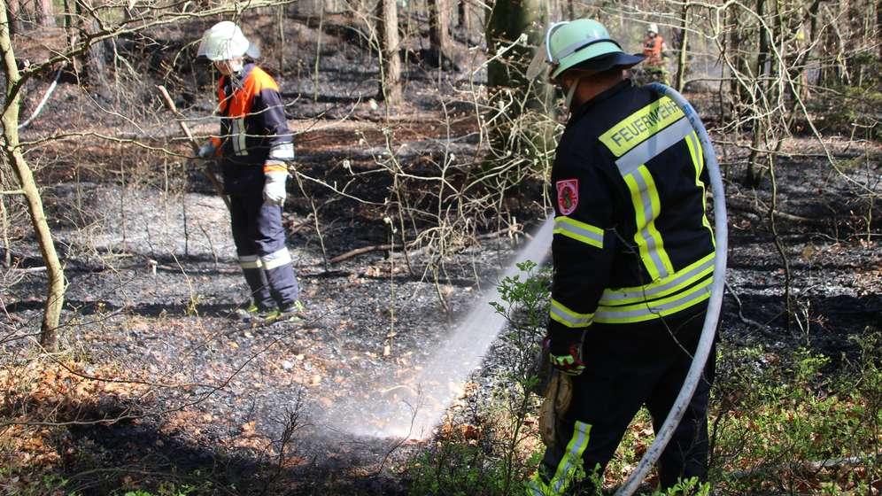 Symbolbild: Feuerwehr löscht einen Waldbrand | Bild:picture alliance/Andy Eberlein/dpa