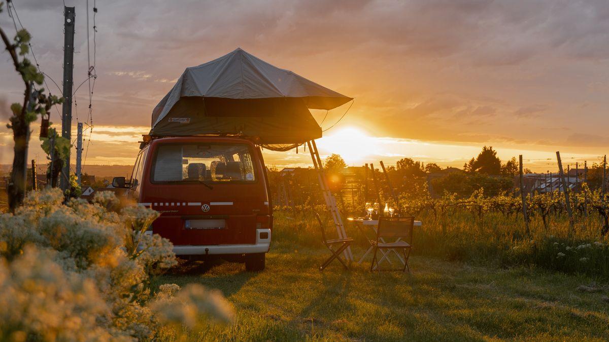 VW-Bulli mit Dachzelt vor Sonnenuntergang im Weinberg
