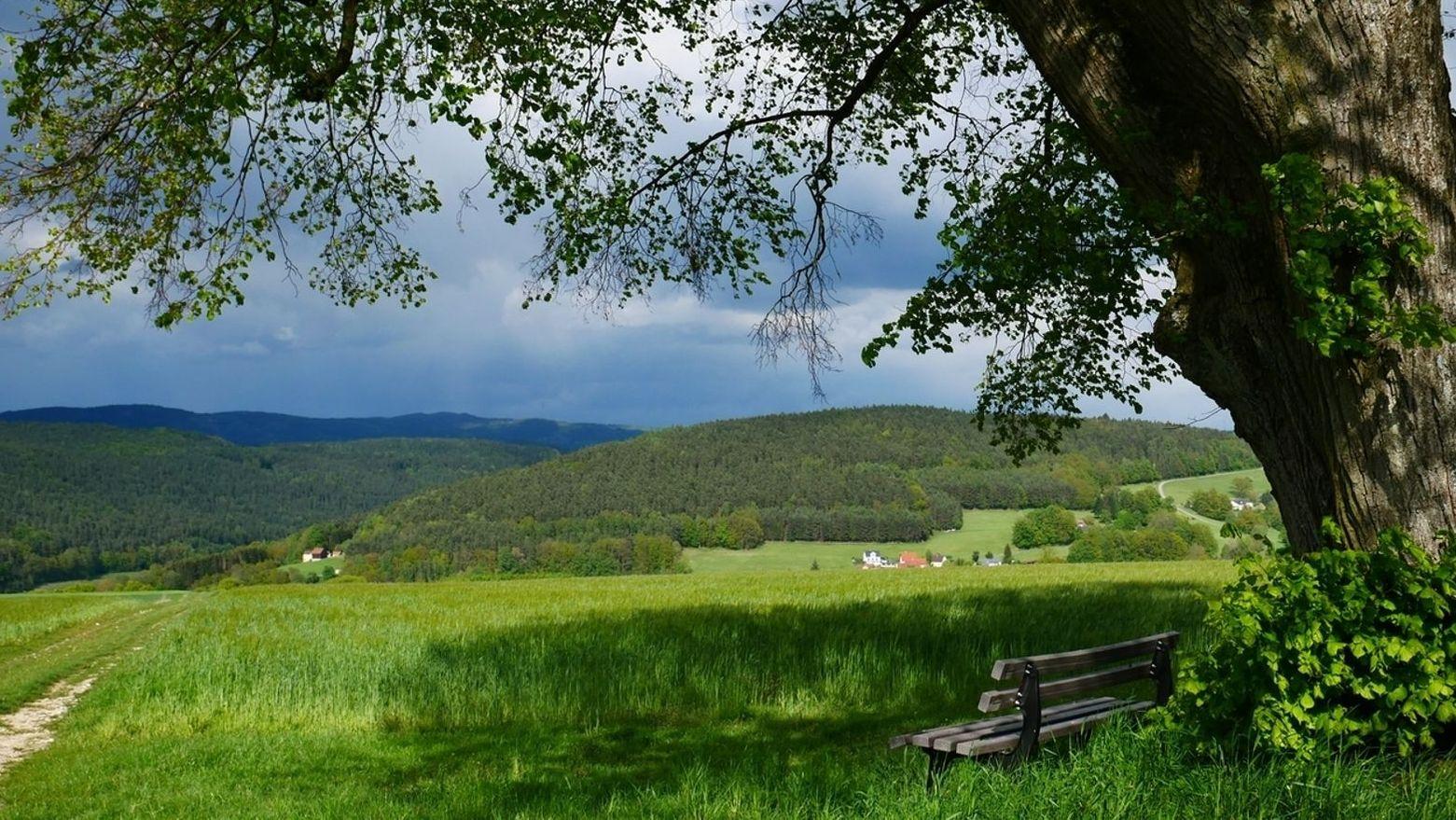 Bewaldete Landschaft im Frankenwald, im Vordergrund eine Holzbank