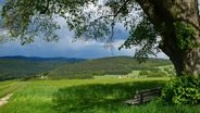 Bewaldete Landschaft im Frankenwald, im Vordergrund eine Holzbank    Bild:BR/Stefan Frosch