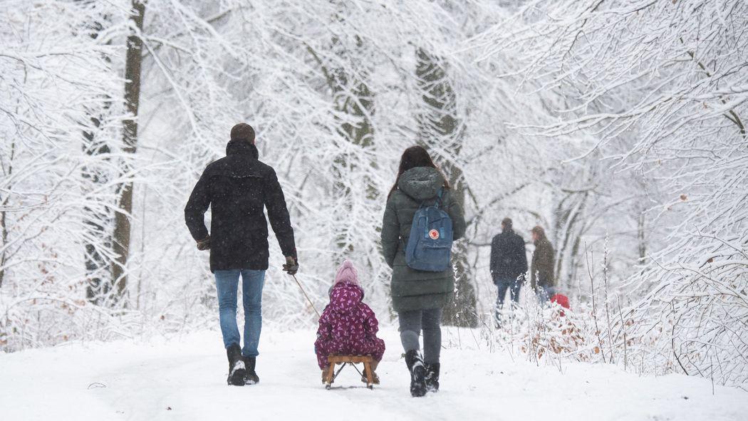 Der Landkreis Eichstätt liegt bundesweit vorn: Hier leben die meisten Familien.