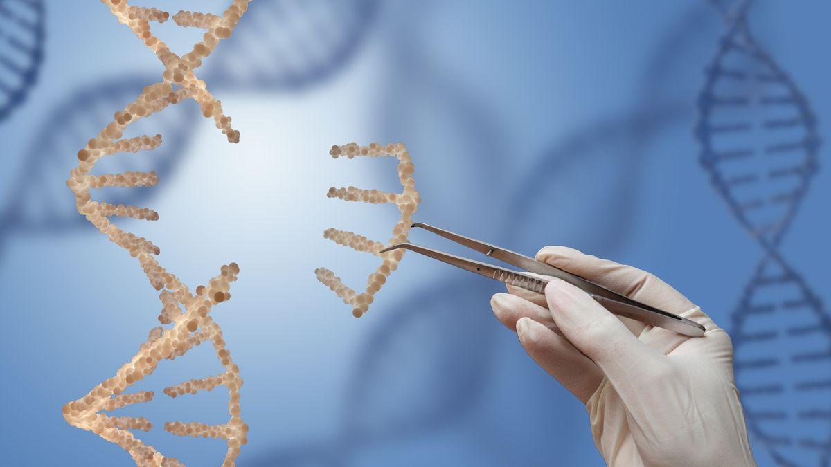 Genschere Crispr/Cas9 - Symbolbild mit DNA-Strängen