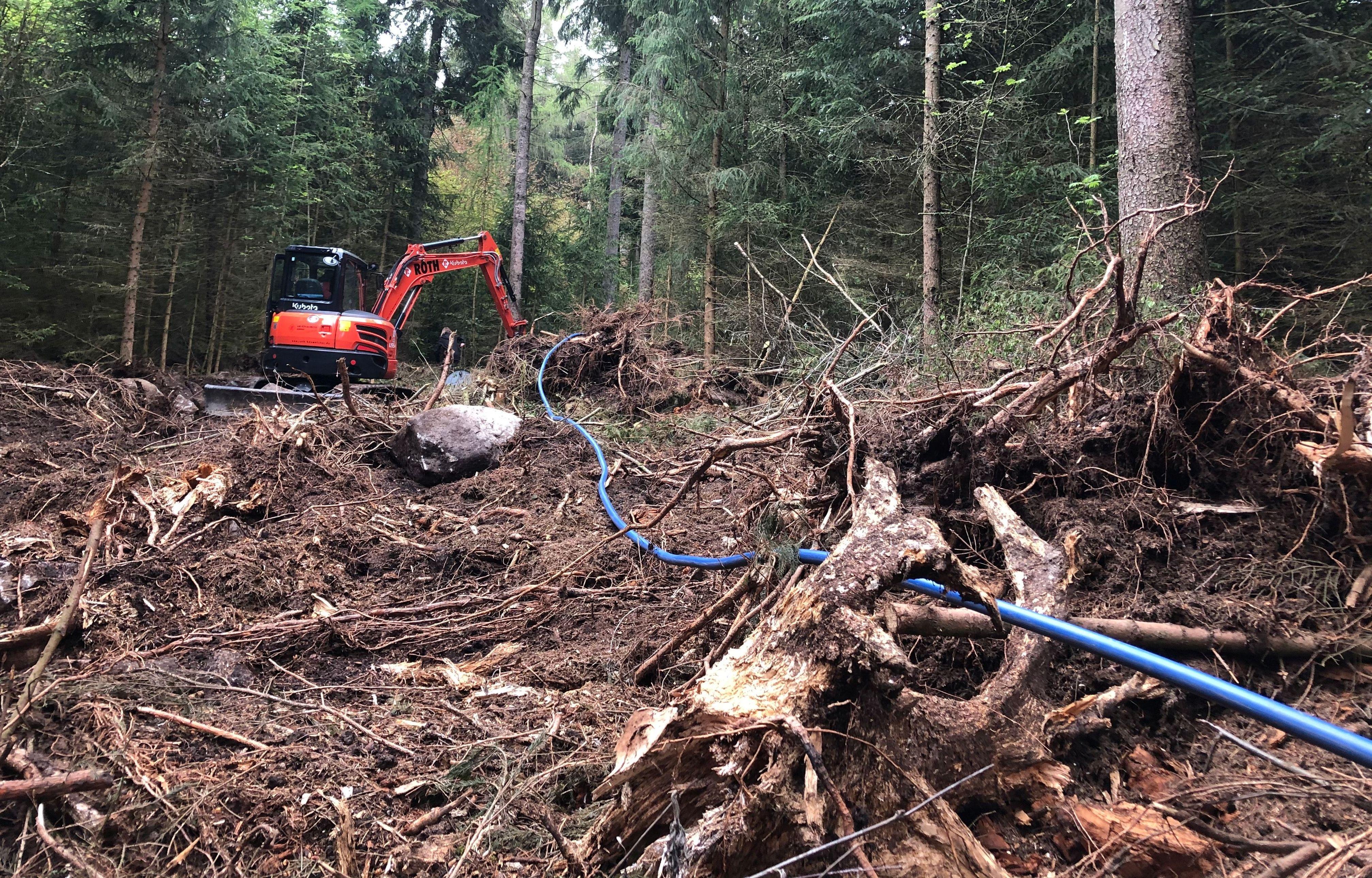 Ein Bagger steht inmitten eines zerstörten Waldes, daneben liegt eine blaue Wasserleitung.