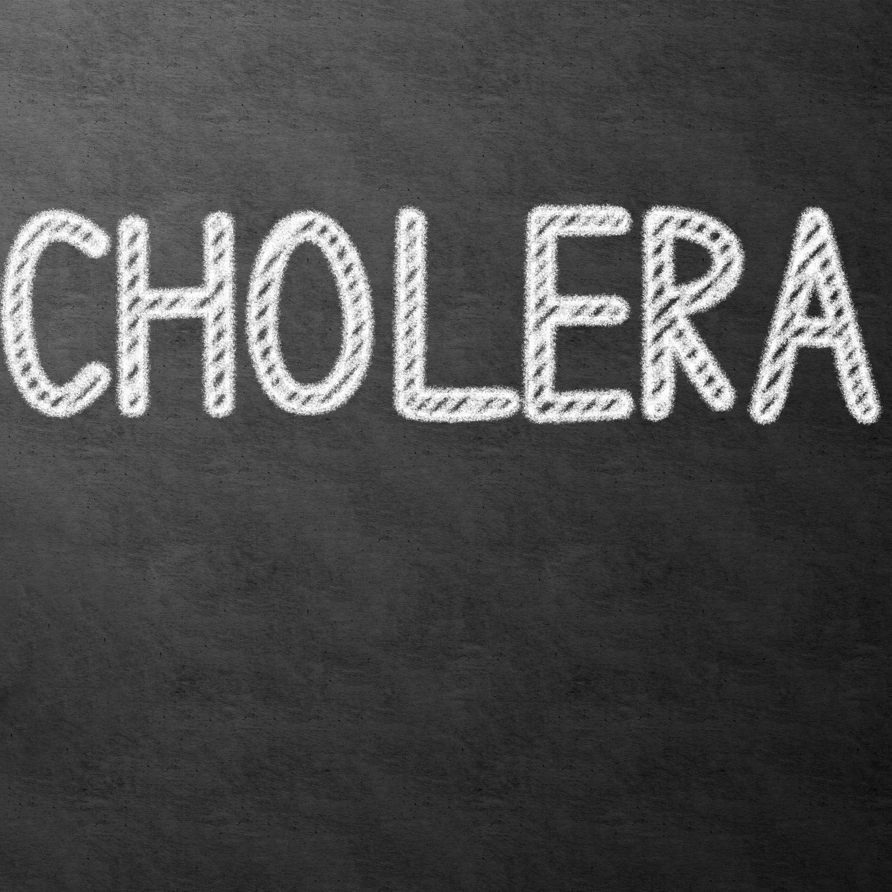 Die Cholera in Bayern - Eine Pandemie des 19. Jahrhunderts