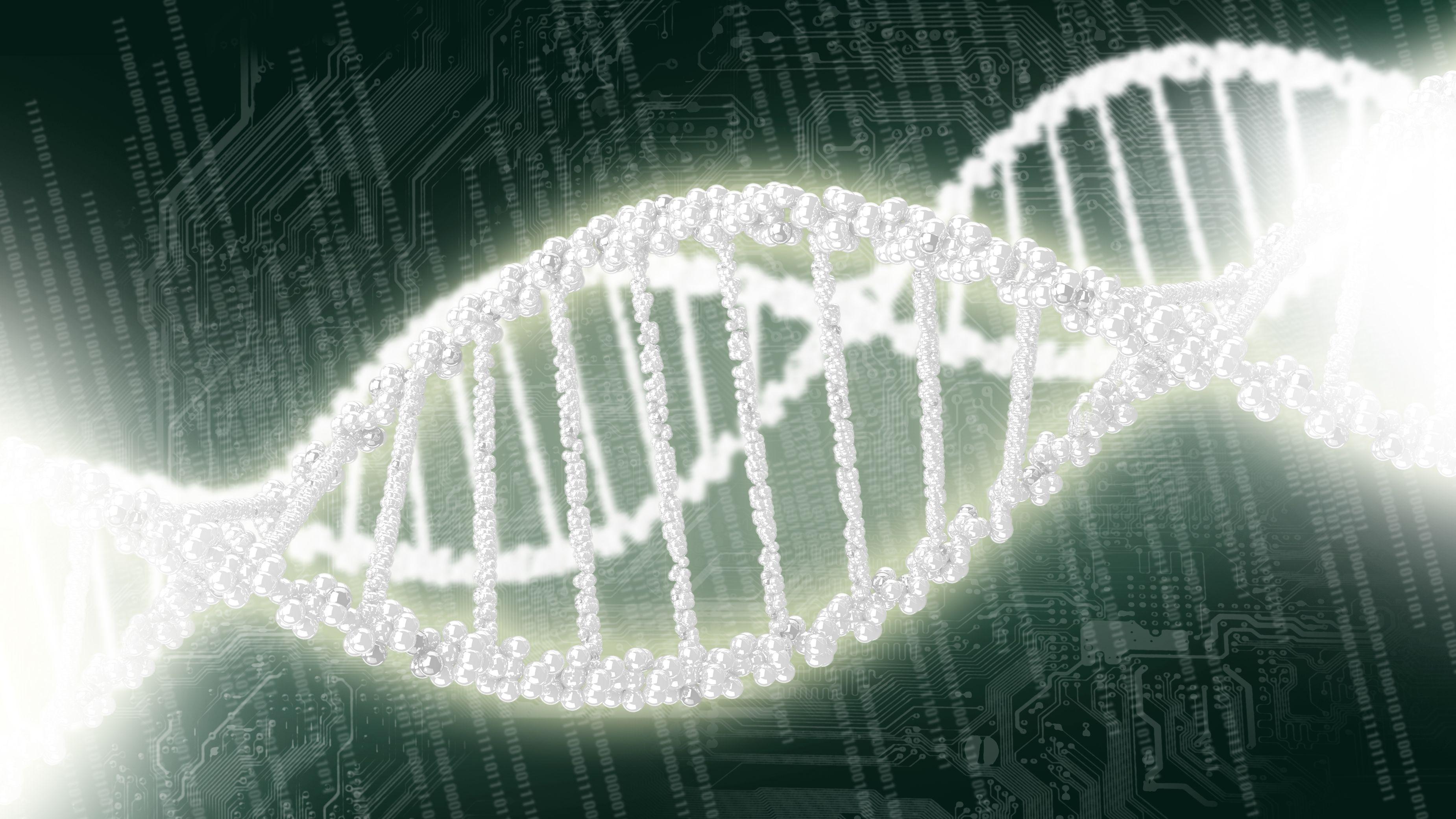 DNS-Doppelhelix