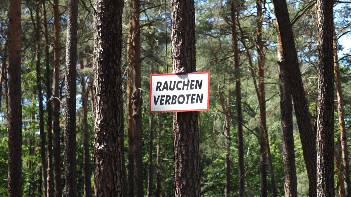 """Ein Schild """"Rauchen verboten"""" hängt im Wald"""