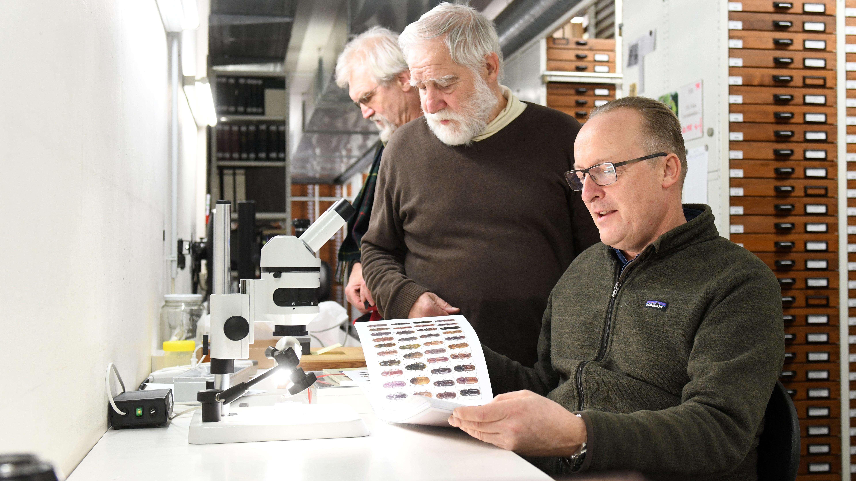 Die Käfersammler Michael von Bressensdorf (rechts), Hans Mühle und Franz Wachtel betrachten in der Zoologischen Staatssammlung München (Bayern) einen Katalog mit abgebildeten Käfern.