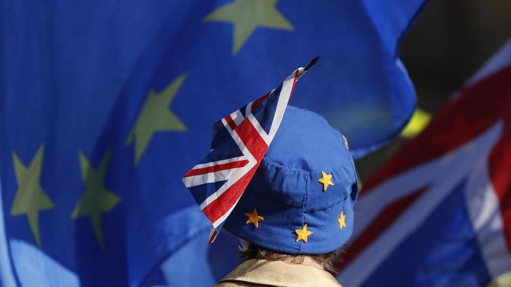 Ein Pro-EU-Demonstrant trägt vor dem britischen Parlament eine EU-Mütze | Bild:picture-alliance/dpa