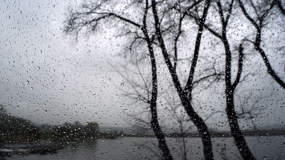 Bäume am Ufer des Haslacher Sees sind hinter einer regennassen Scheibe zu sehen | Bild:dpa-Bildfunk