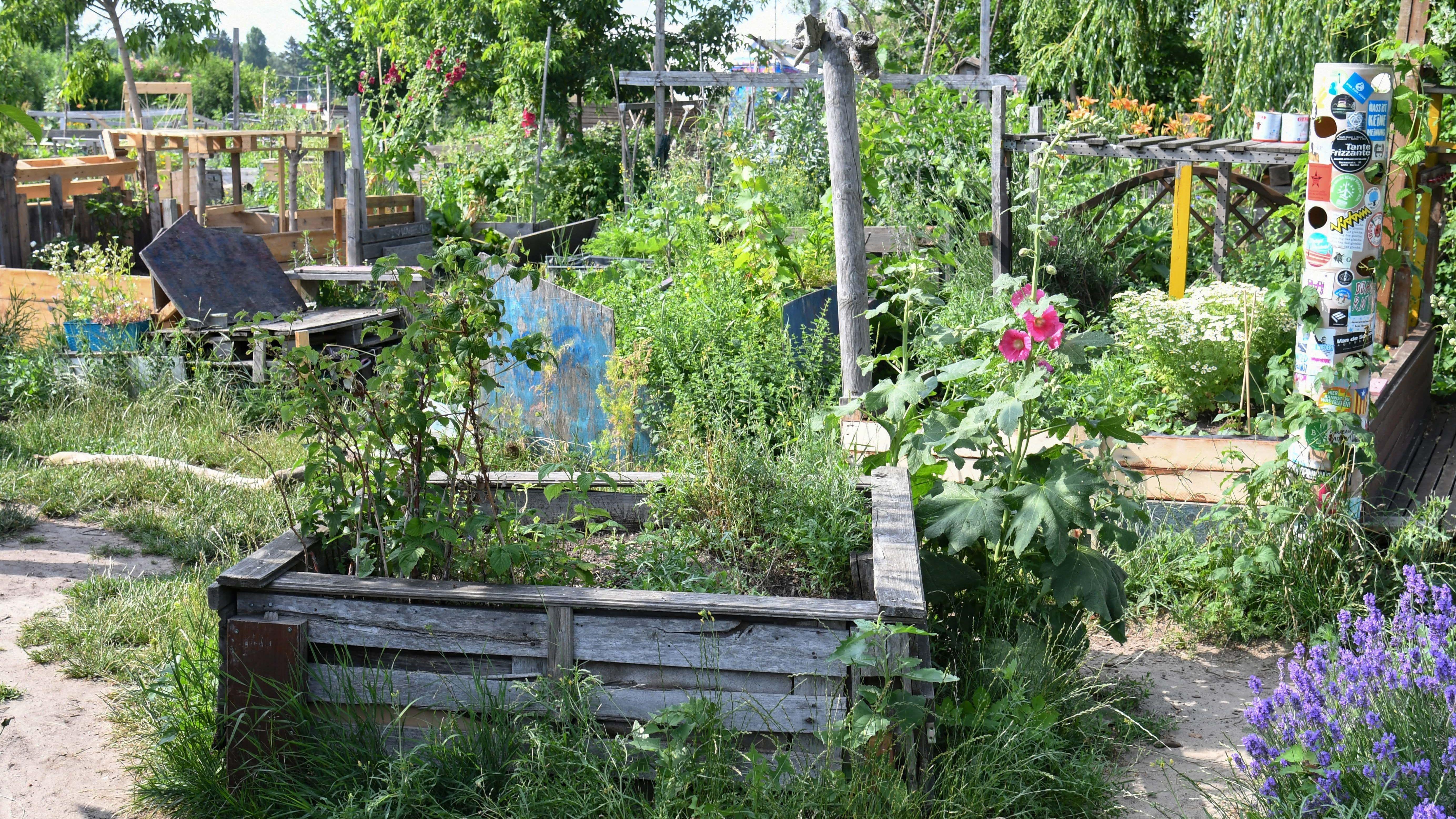 Ein Urban Garden
