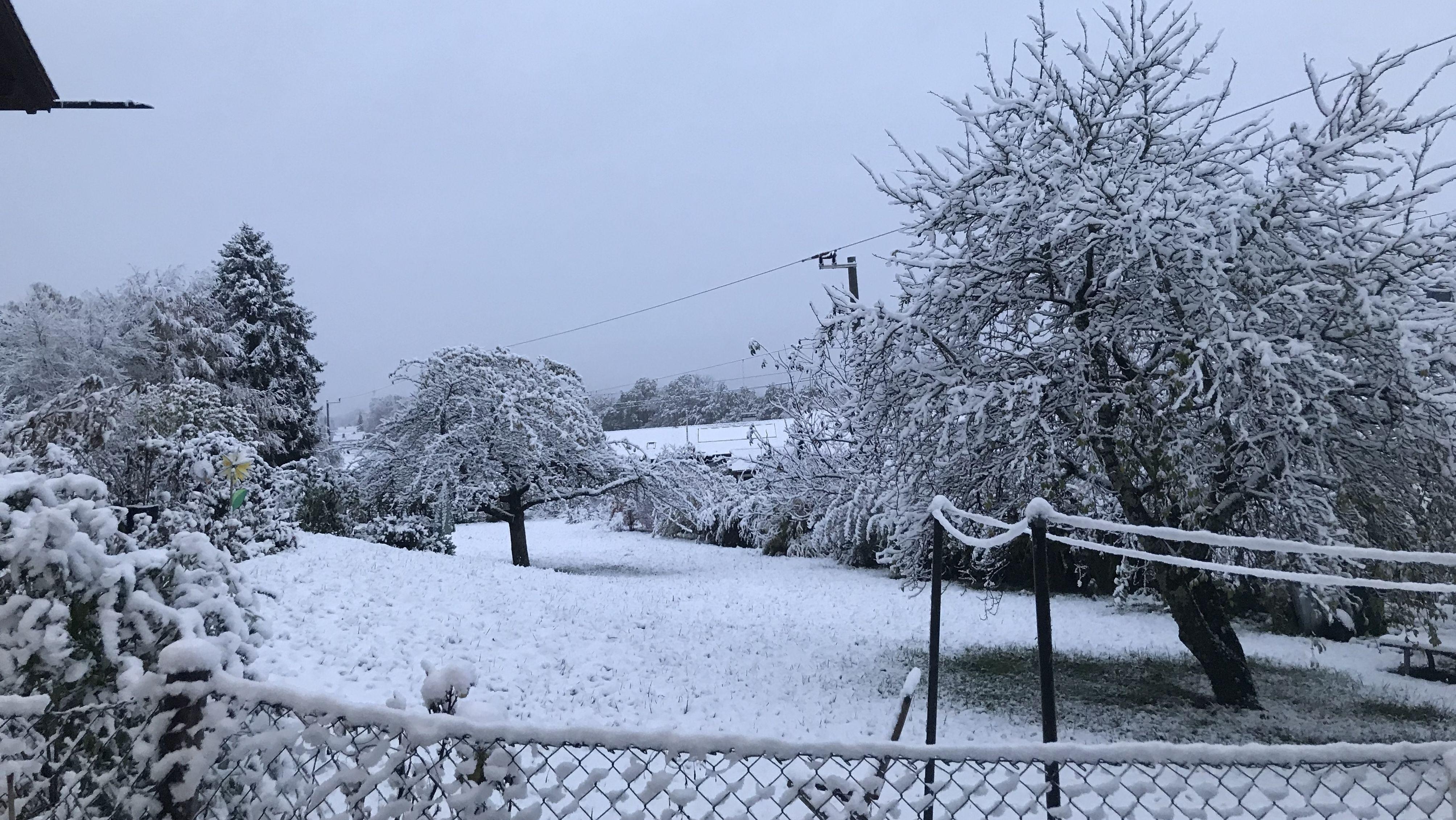 Schnee auf Bäumen, Wiesen und Dächern in Murnau