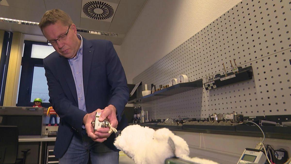 Rainer Weiskirchen zieht mit einem Prüfgerät einem weißen Plüschtier an der Nase.