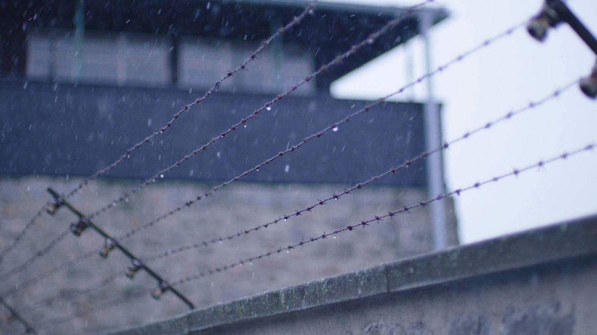 Stacheldraht im KZ Mauthausen