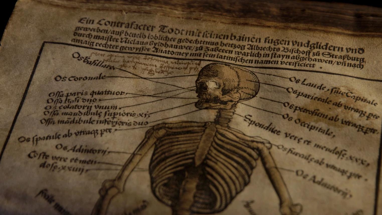 Fachbuch für Bader aus dem 16. Jahrhundert