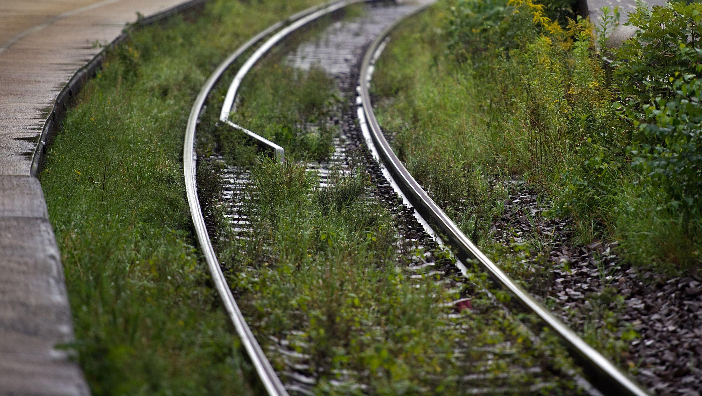Gras und Unkraut zwischen Schienen.