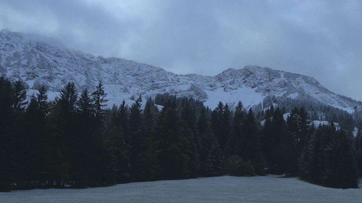 Verschneite Berge vor dunklem Wald in der Morgendämmerung